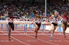 From left to right: Dawn Harper-Nelson, Queen Harrison and Sally Pearson, 100 metres hurdles at the Sainsbury's Birmingham Grand Prix. Photos: David T. Hewitson/Sports for All Pics